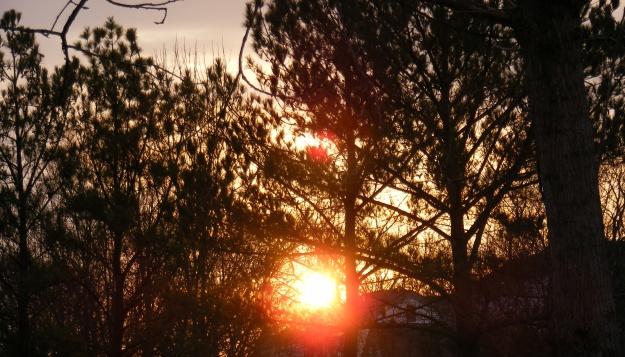 sunrise41.jpg